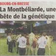 Article paru dans Le Progrès (22 Juin 2011)