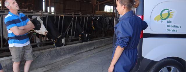 Les activités d'insémination animale et de service aux éleveurs sont