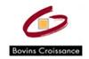 Bovins Croissance